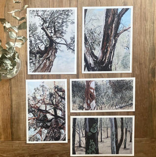 Farm Series Customised Prints