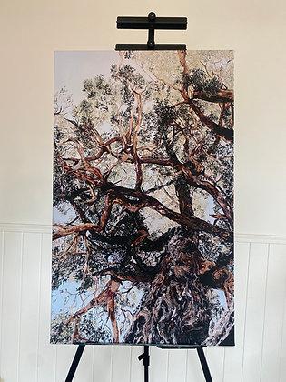 The Evolution Tree Limited Edition Custom Print