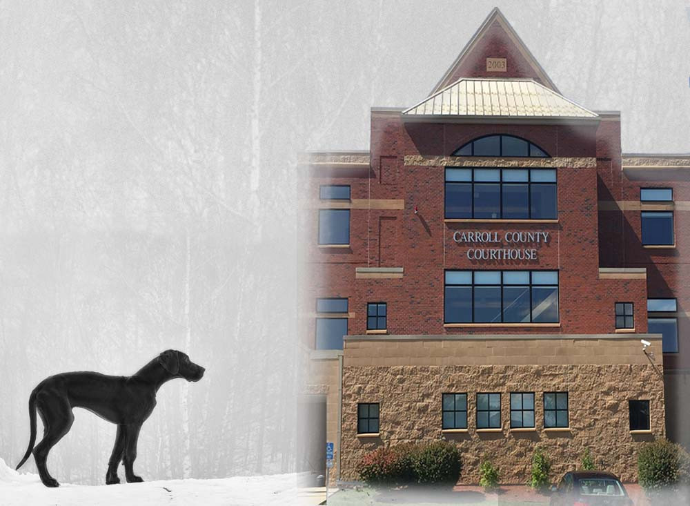 Great Dane, Carroll County Courthouse, Straight Twist