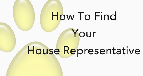 How To Find Your House Representative - NH