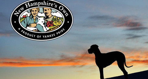 The Truth About the DOA and the Wolfeboro Great Danes