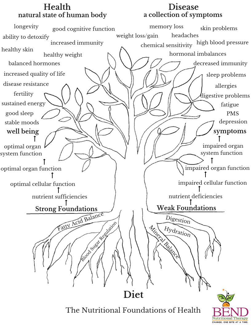 Nutritional Foundations of Health Tree