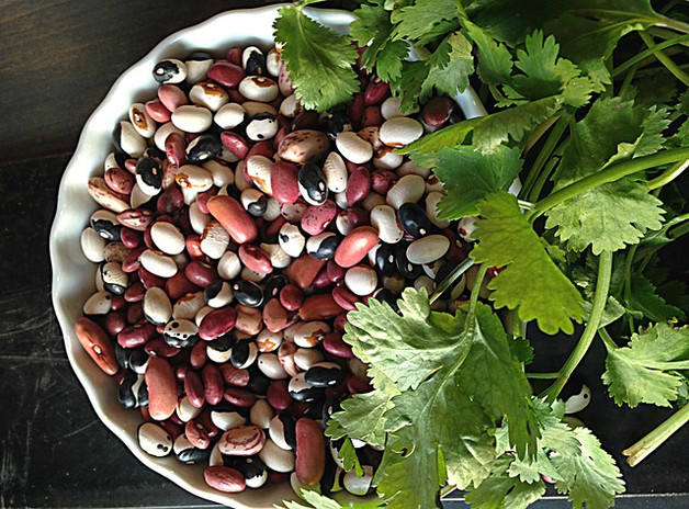 Are beans healthy for you?