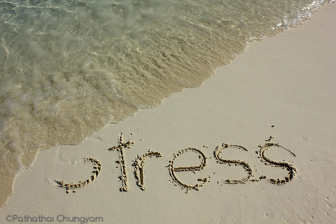Two Free Things To Do This Summer To Reduce Stress and Increase Health