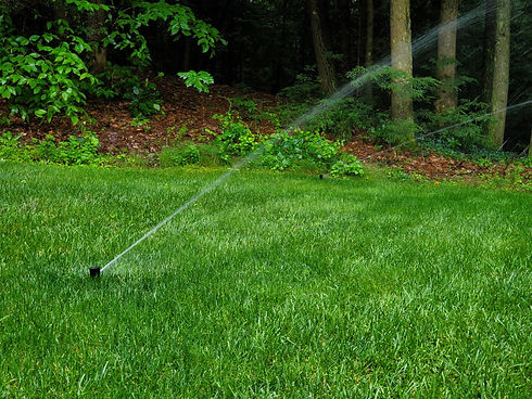 irrigation1.jpeg