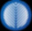 palmetto.icon.png