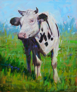 The Curious Cow