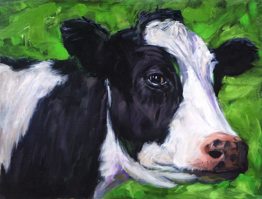 dairy cow 01