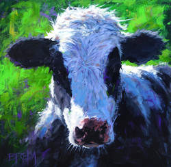 young dairy cow 02