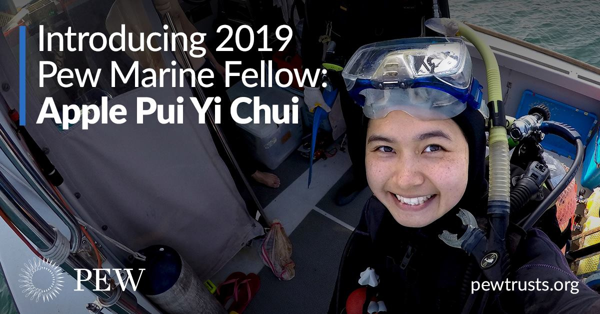 Dr. Apple Chui, a Pew Marine Fellow.