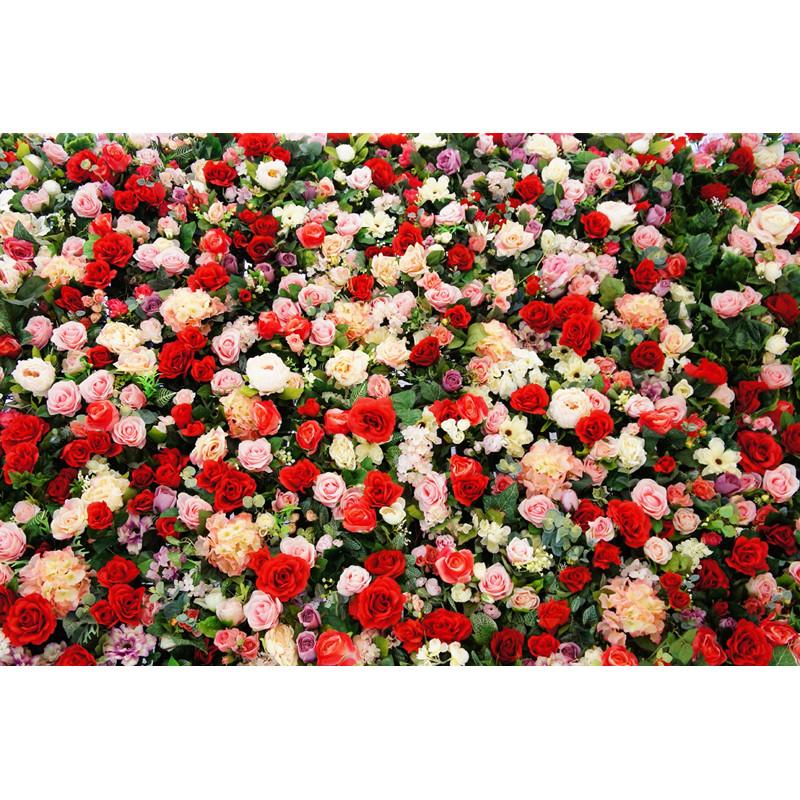 Pirosas rózsafal