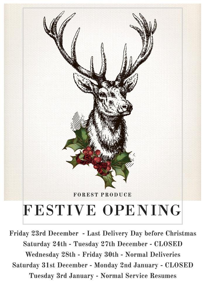Festive Opening...