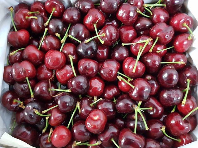 Stunning Cherries Tony & Mark sourced from Rungis Market, call the team to order