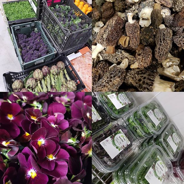 A selection of Forest Fresh Food
