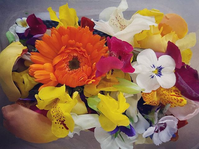 Beautiful Edible Flowers in chef...