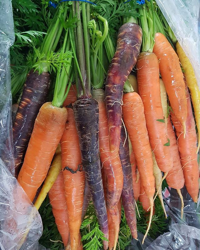 Fresh in; Bunched Heritage Carrots
