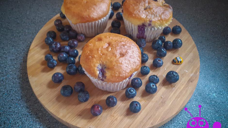 Blaubeer-Joghurt-Muffins (12 Stück)
