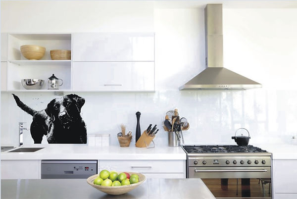 pet portrait glass splashback.jpg