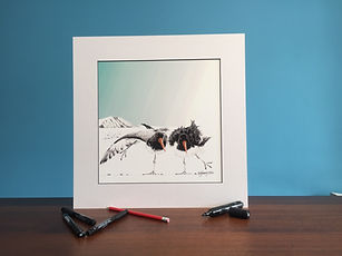 Black ink dot mounted print of a pair of dancing oystercatchers 40 x 40 cm