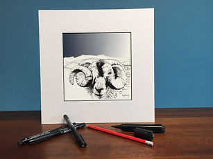 Black ink dot mounted print of a ram with half a horn in front of Cadair Idris 20 x 20 cm