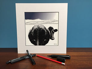 Black ink dot mounted print of a Welsh Black cow in front of Cadair Idris