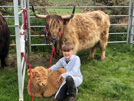 NEFYN SHOW RESULTS: 6th MAY 2019