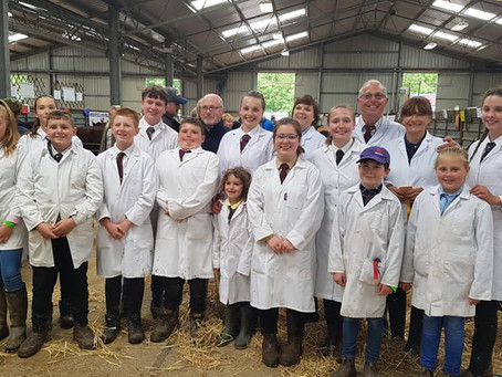 Young handlers event at Three Counties Show a success!