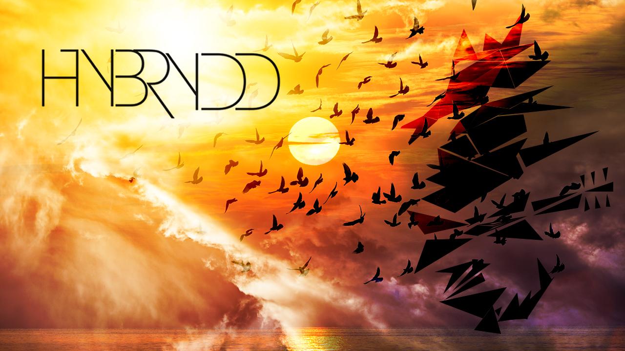 Hybrydd - Mocking bird