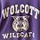 Thumbnail: c.1980s Wolcott Wildcats [S/M]