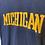 Thumbnail: c.1960s Michigan Flocked Logo [S]