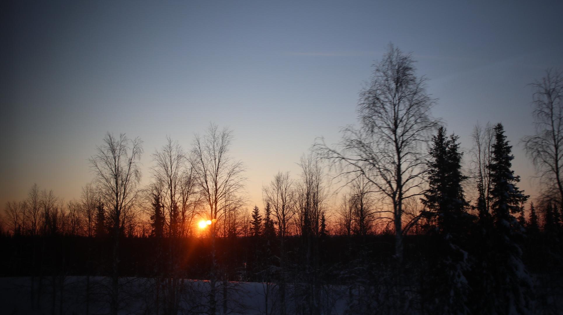 フィンランドの1月