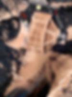 SiebloeffelBVR2.jpg
