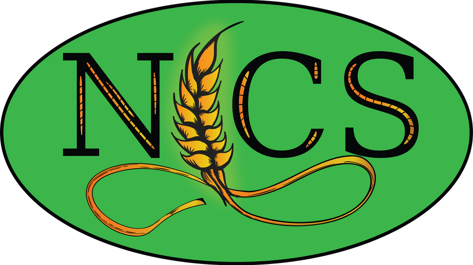 NICS Logo.png