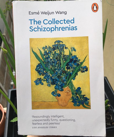 Book Review: 'The Collected Schizophrenias' by Esmé Weijun Wang