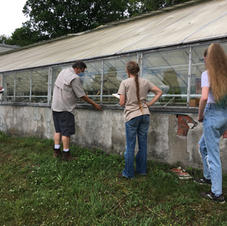 Greenhouse expert inspects the structure before its taken down