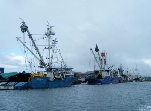 COVID-19 and its likely impact on the tuna industry in the Pacific Islands