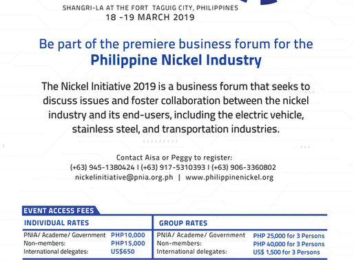 The Nickel Initiative 2019