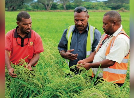 K113m to Support Agriculture, Food Security