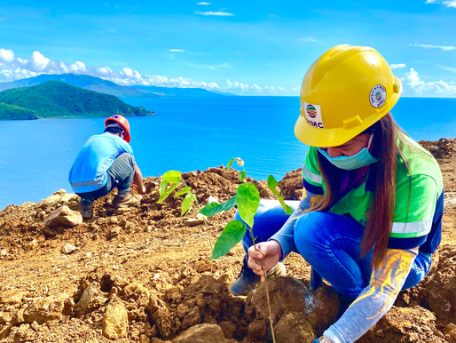 To Date, PNIA Members Have Planted Almost 7 Million Trees