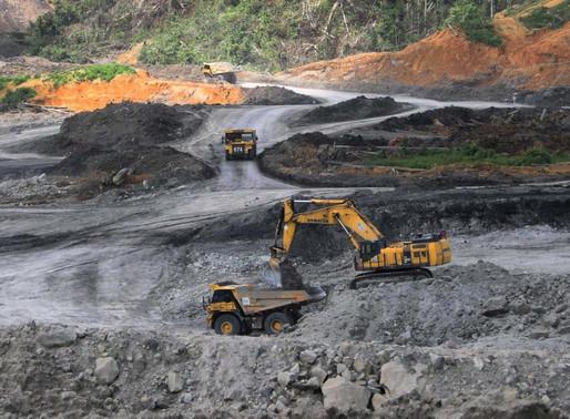 Coal Fuel Still Dominates