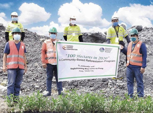 Carmen copper taps farmers to rehab mined out areas