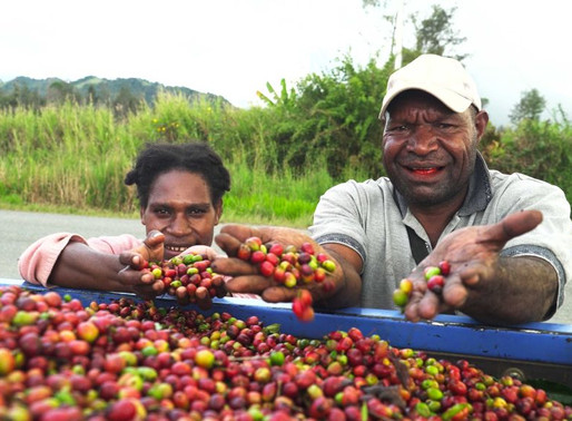 Coffee Roadmap Sets 3 Million Bags Target For 2030