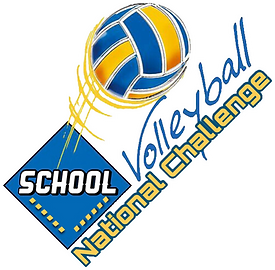 logo volleyball.PNG