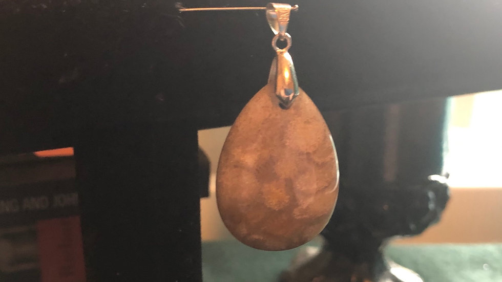 Fossilized Pendant