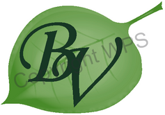 BradfordVillage_Logo2_edited.png
