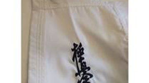 KYOKUSHINKAI KARATEGI K08 (for nybegynnere)