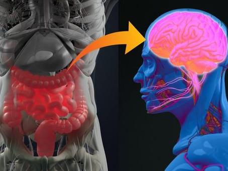 Mikrobiyom - Yüzde Kaç İnsanız?