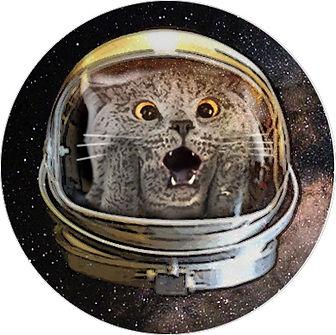 CAT Circle.jpg