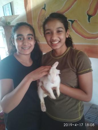 Aleya and Tiana at Kalote Animal Trust