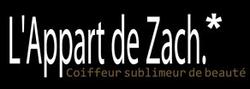 L'APPART DE ZACH 1